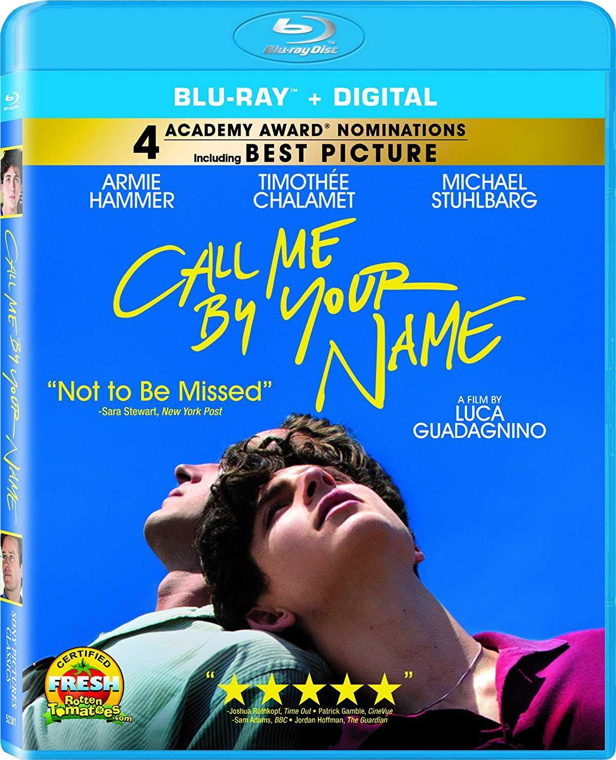 Call Me by Your Name 2017 1080p Türkçe indir